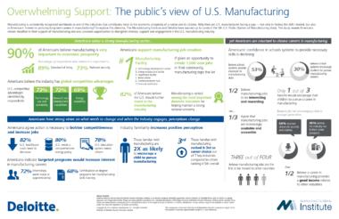 MI Public Perception Infographic, 2014